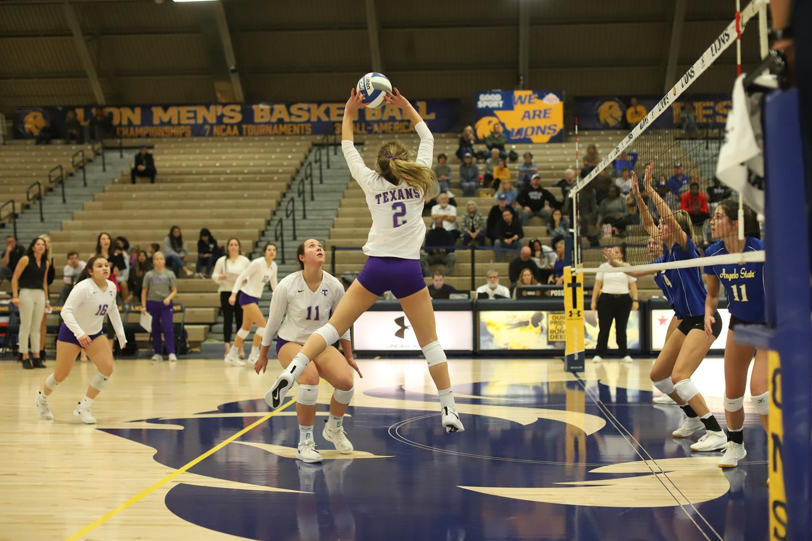Volleyball Match Day Ncaa South Central Regional Tournament Tarleton State University Athletics